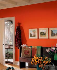 Покраска стены в ярко ораньжевый цвет